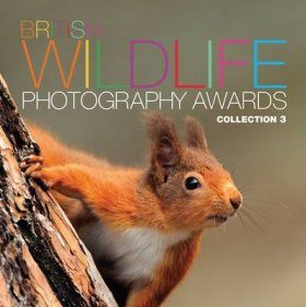 British Wildlife Photography Awards, Collection 3