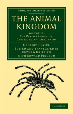 The Animal Kingdom, Volume 13