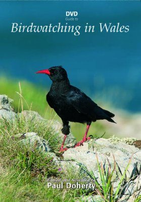 DVD Guide to Birdwatching in Wales (All Regions)