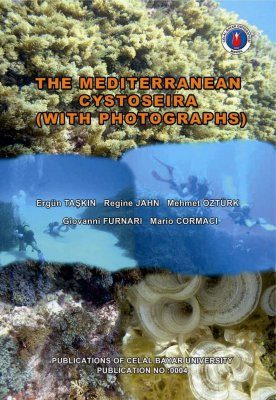 The Mediterranean Cystoseira (With Photographs)