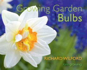 Growing Garden Bulbs
