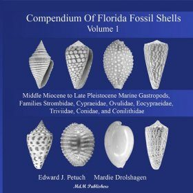 Compendium of Florida Fossil Shells, Volume 1 (Book + DVD-ROM)