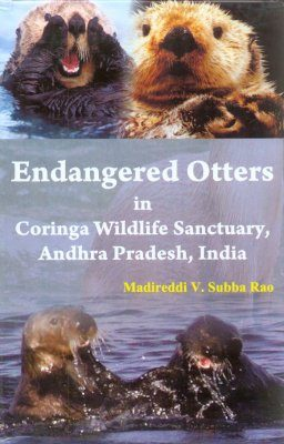 Endangered Otters in Coringa Wildlife Sanctuary, Andhra Pradesh, India
