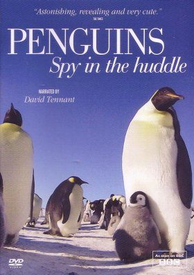 Penguins: Spy In the Huddle (Region 2)
