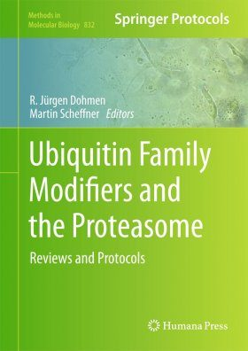 Ubiquitin Family Modifiers and the Proteasome