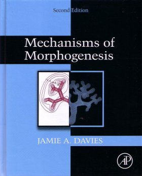 Mechanisms of Morphogenesis