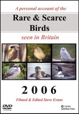 Rare & Scarce Birds Seen in Britain 2006 (All Regions)