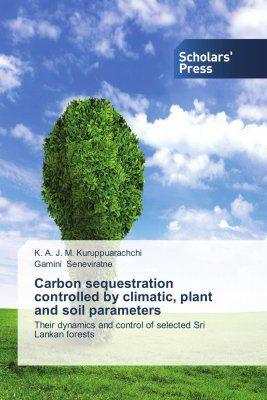 Carbon Sequestration Controlled by Climatic, Plant and Soil Parameters