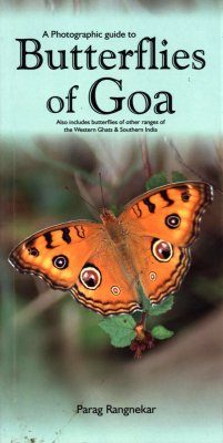 A Photographic Guide to Butterflies of Goa