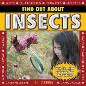 Find Out About Insects