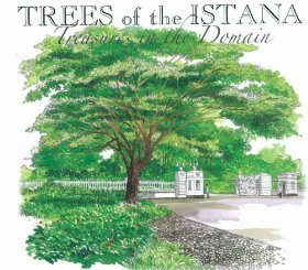 Trees of the Istana