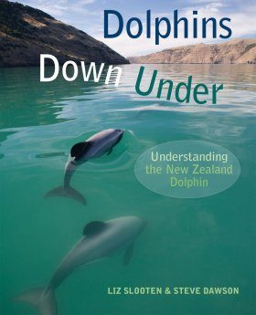 Dolphins Down Under