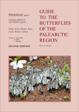 Pieridae Part 1 (Guide to the Butterflies of the Palearctic Region)