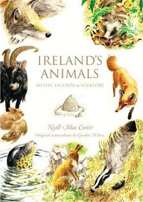Ireland's Animals