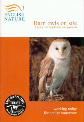 Barn Owls on Site