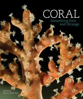Coral: Something Rich and Strange