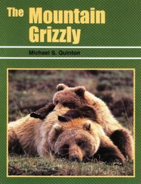The Mountain Grizzly