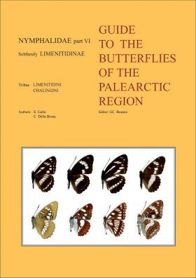 Nymphalidae Part 6 (Guide to the Butterflies of the Palearctic Region)