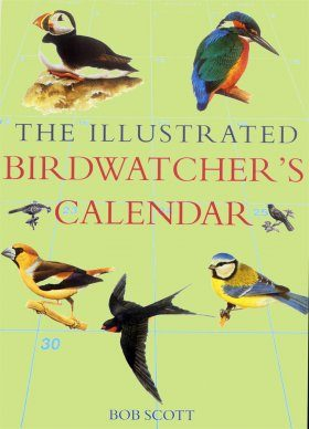 The Illustrated Birdwatchers Calendar