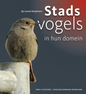 Stadsvogels in hun Domein [Urban Birds in their Habitat]