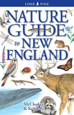 Nature Guide to New England