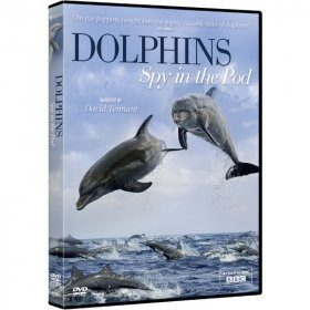 Dolphins: Spy in the Pod (Region 2)