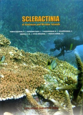 Scleractinia of Andaman and Nicobar Islands