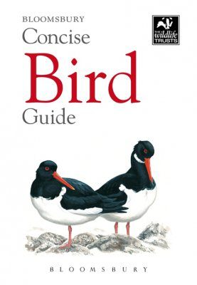 Bloomsbury Concise Bird Guide