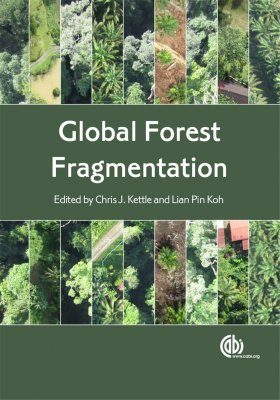 Global Forest Fragmentation