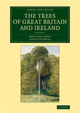 The Trees of Great Britain and Ireland, Volume 4