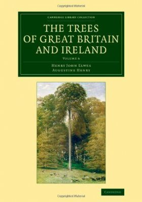 The Trees of Great Britain and Ireland, Volume 6
