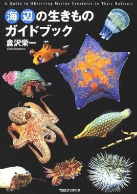 Umibe No Ikimono Gaidobukku [A Guide to Observing Marine Creatures in their Habitats]
