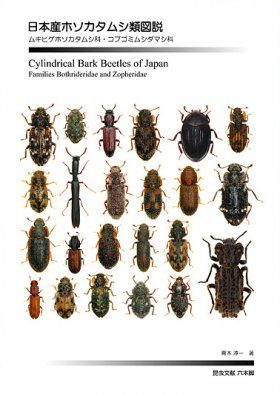 Cylindrical Bark Beetles of Japan [Japanese]