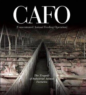 CAFO (Concentrated Animal Feeding Operation)