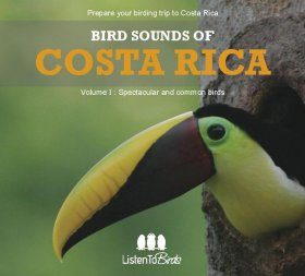 Bird Sounds of Costa Rica, Volume 1: Spectacular and Common Birds