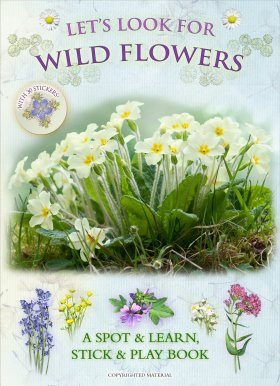 Let's Look for Wild Flowers