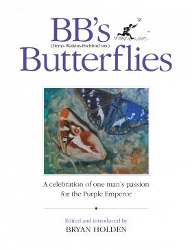 BB's Butterflies