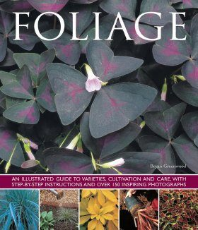 Foliage: An Illustrated Guide to Varieties, Cultivation and Care