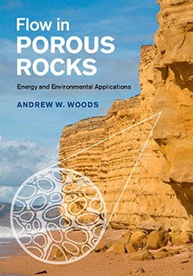 Flow in Porous Rocks