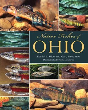 Native Fishes of Ohio