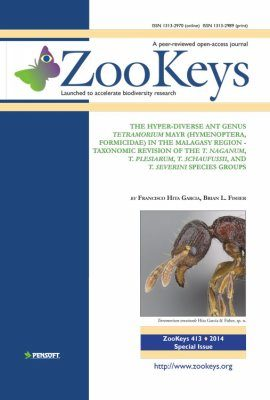 ZooKeys 413: The Hyper-Diverse Ant Genus Tetramorium Mayr (Hymenoptera, Formicidae) in the Malagasy region Taxonomic Revision of the T. naganum, T. plesiarum, T. schaufussii, and T. severini Species Groups