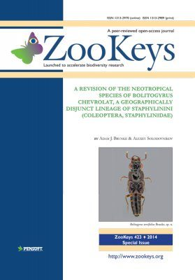 ZooKeys 423: A Revision of the Neotropical Species of Bolitogyrus Chevrolat, a Geographically Disjunct Lineage of Staphylinini (Coleoptera, Staphylinidae)