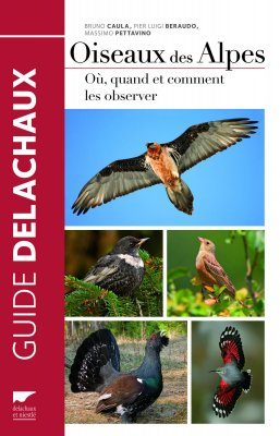 Oiseaux des Alpes: Où, Quand et Comment les Observer [Birds of the Alps: Where, When and How to Observe Them]