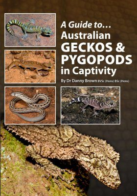 A Guide to Australian Geckos and Pygopods in Captivity