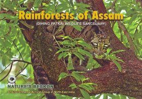 Rainforests of Assam