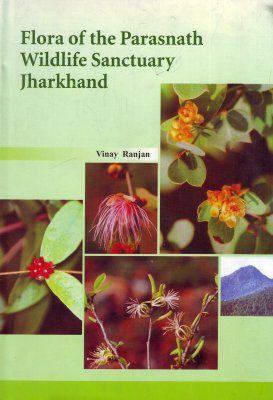 Flora of the Parasnath Wildlife Sanctuary Jharkhand