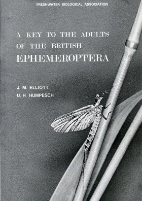 A Key to the Adults of the British Ephemeroptera