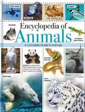 Great Animal Encyclopedia