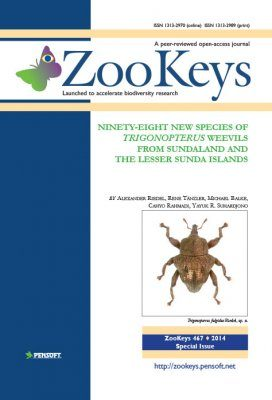 ZooKeys 467: Ninety-Eight New Species of Trigonopterus Weevils from Sundaland and the Lesser Sunda Islands