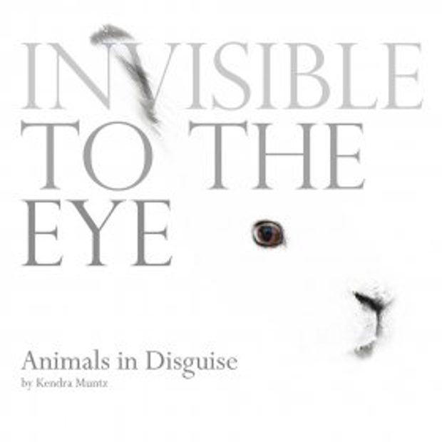 Invisible eye is the what to What is
